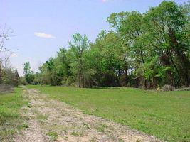 Neuse River Property (245 Acres)